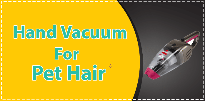 handheld vacuum for pet hair