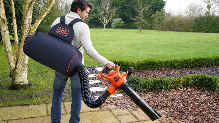 Best Leaf Vacuum Cleaners to Buy